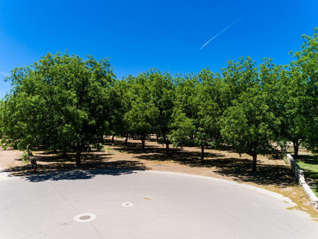 3000 Mesilla Verde Terrace, Las Cruces NM